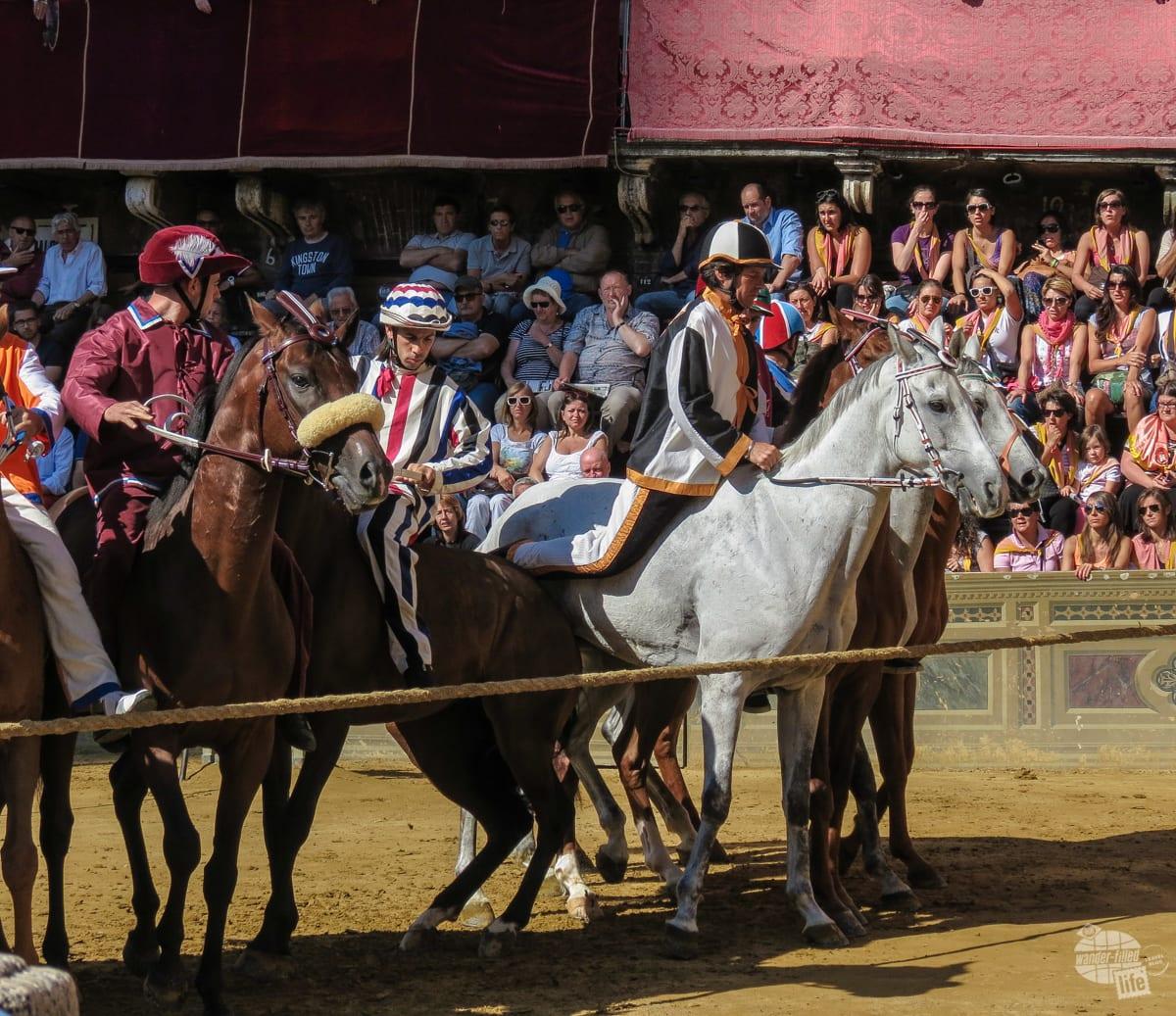 The line up of Il Palio di Siena