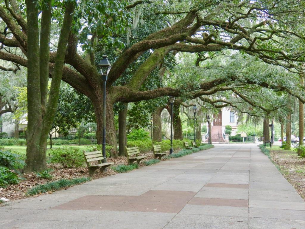The Oaks of Savannah