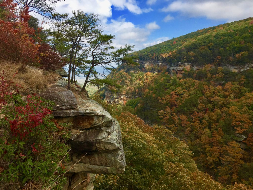 Cloudland Canyon in the fall.