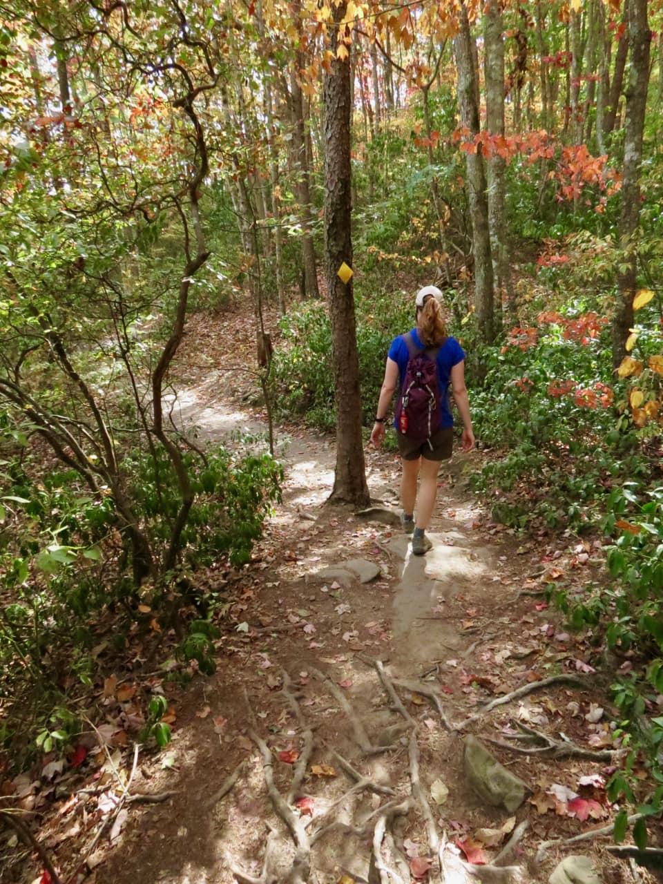 Bonnie on the Trail