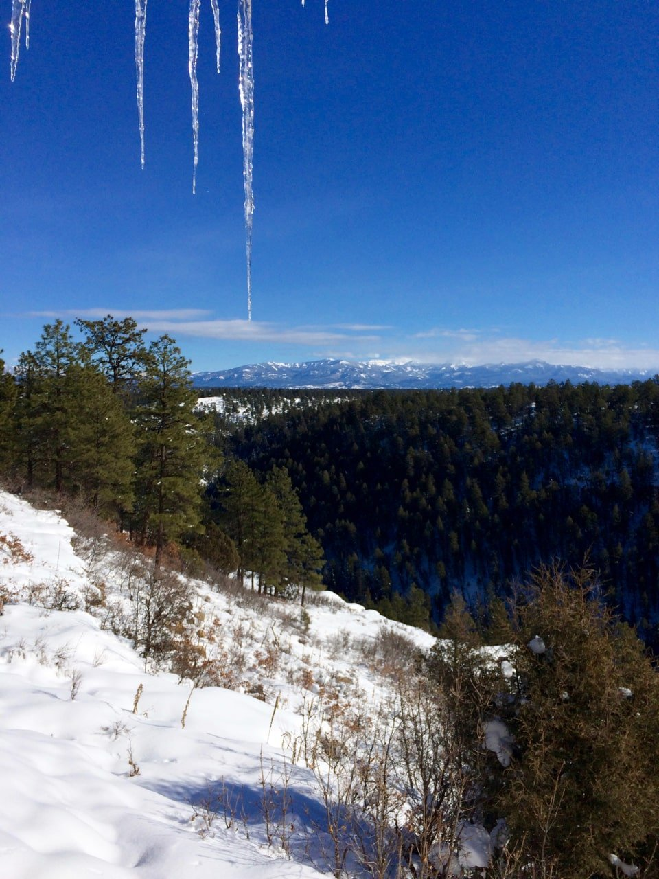 View from Pagosa