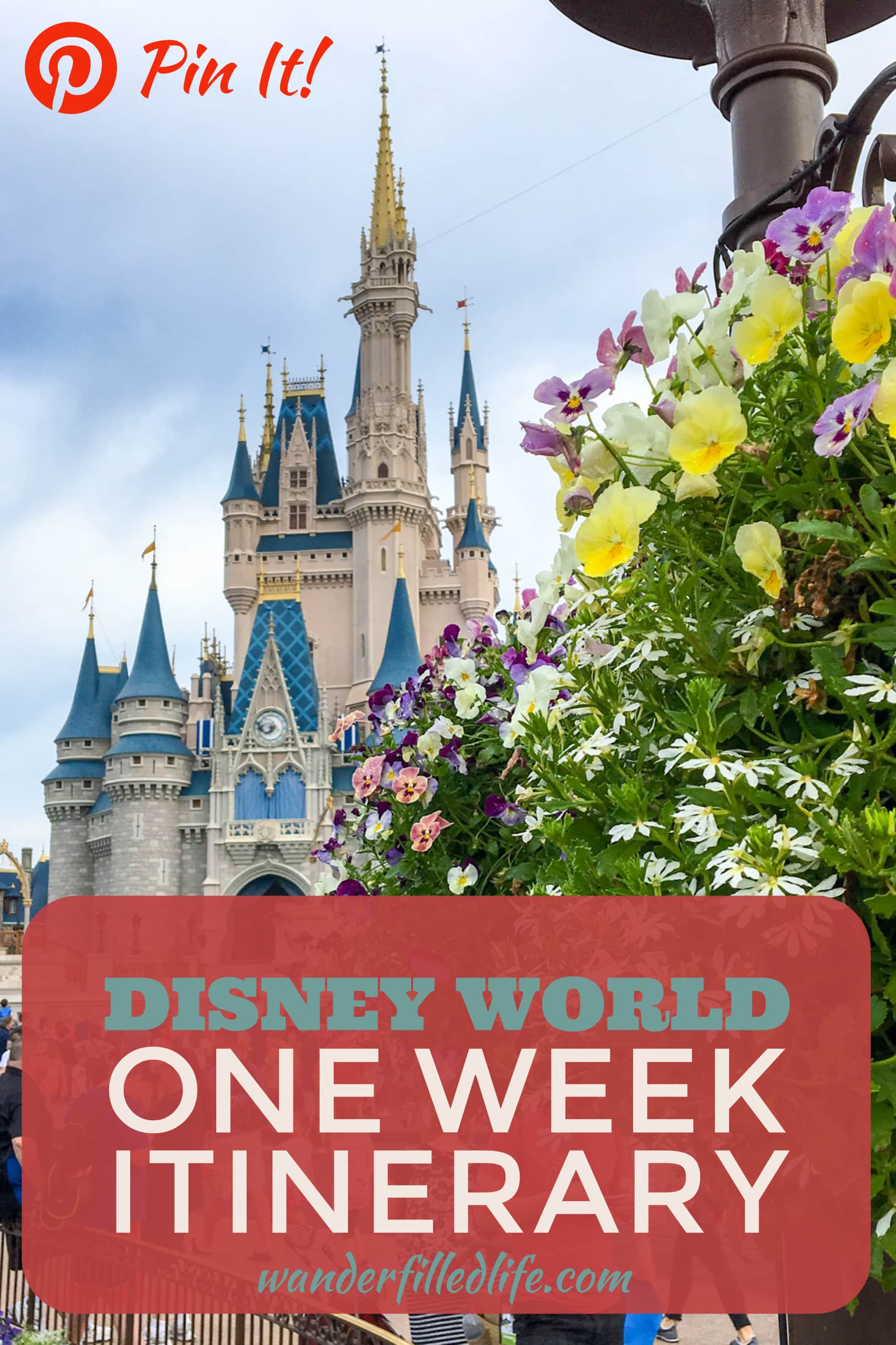 Our itinerary for a week at Disney World. Includes out stay at Fort Wilderness, visits to Magic Kingdom, Epcot, Animal Kingdom and Hollywood Studios.