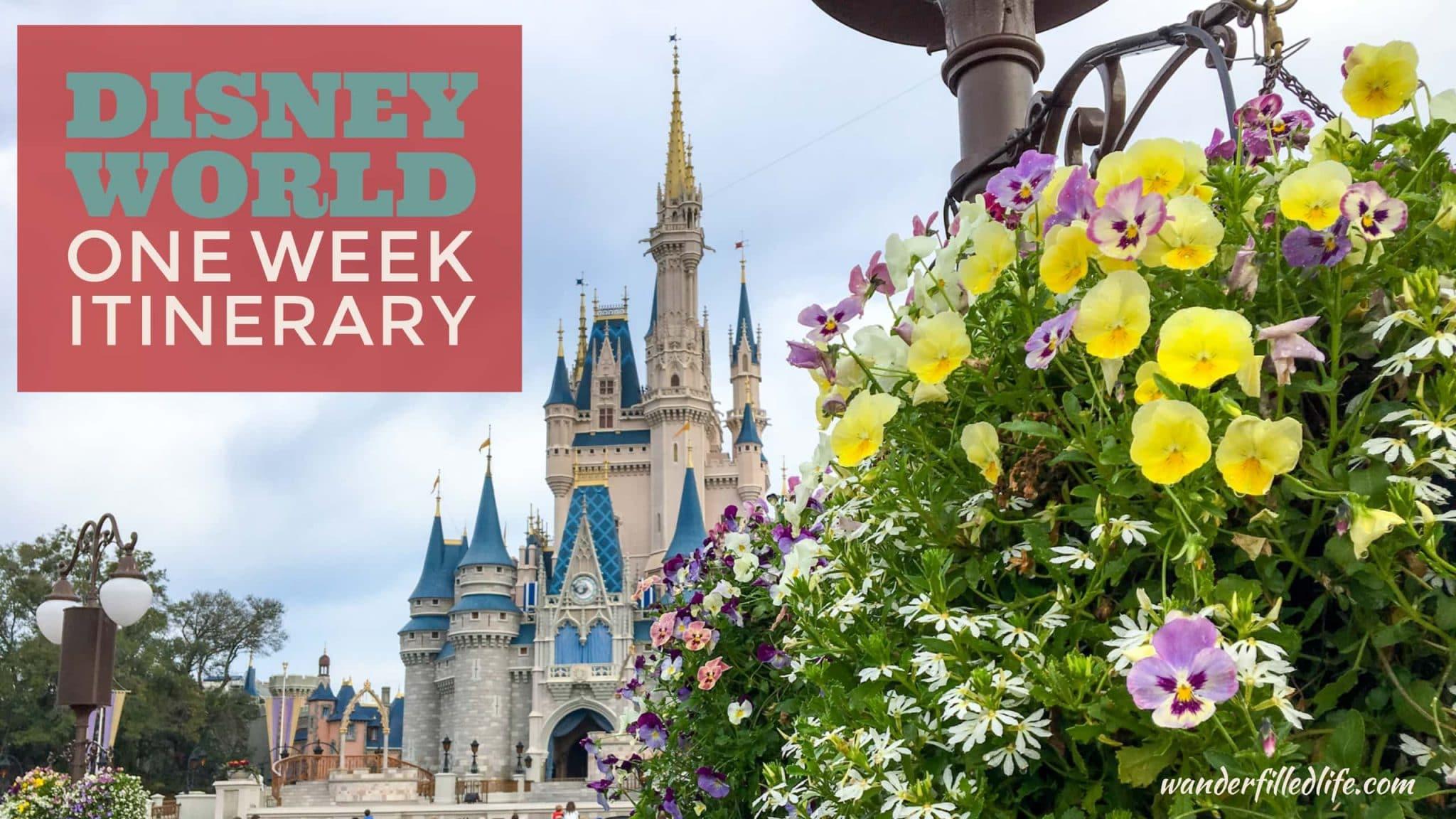 Disney World One Week Itinerary
