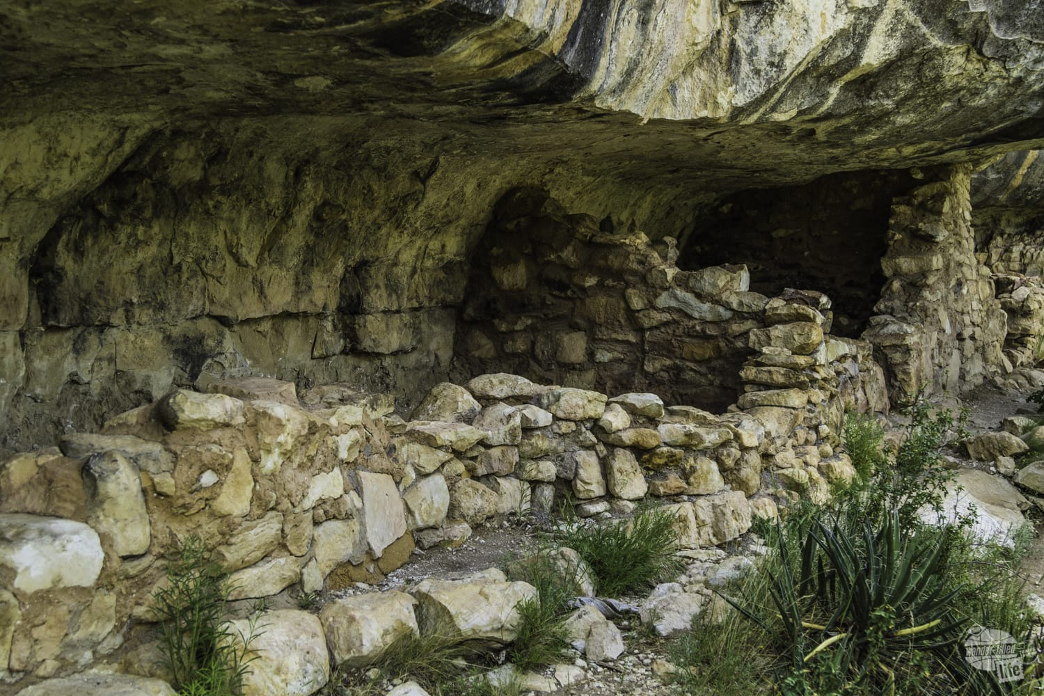 Cliff dwelling at Walnut Canyon National Monument