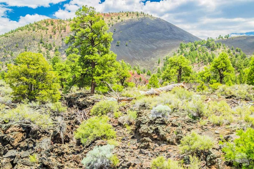 Sunset Crater Volcano still has large portions of its slopes covered in lava thousands of years since its last eruption.