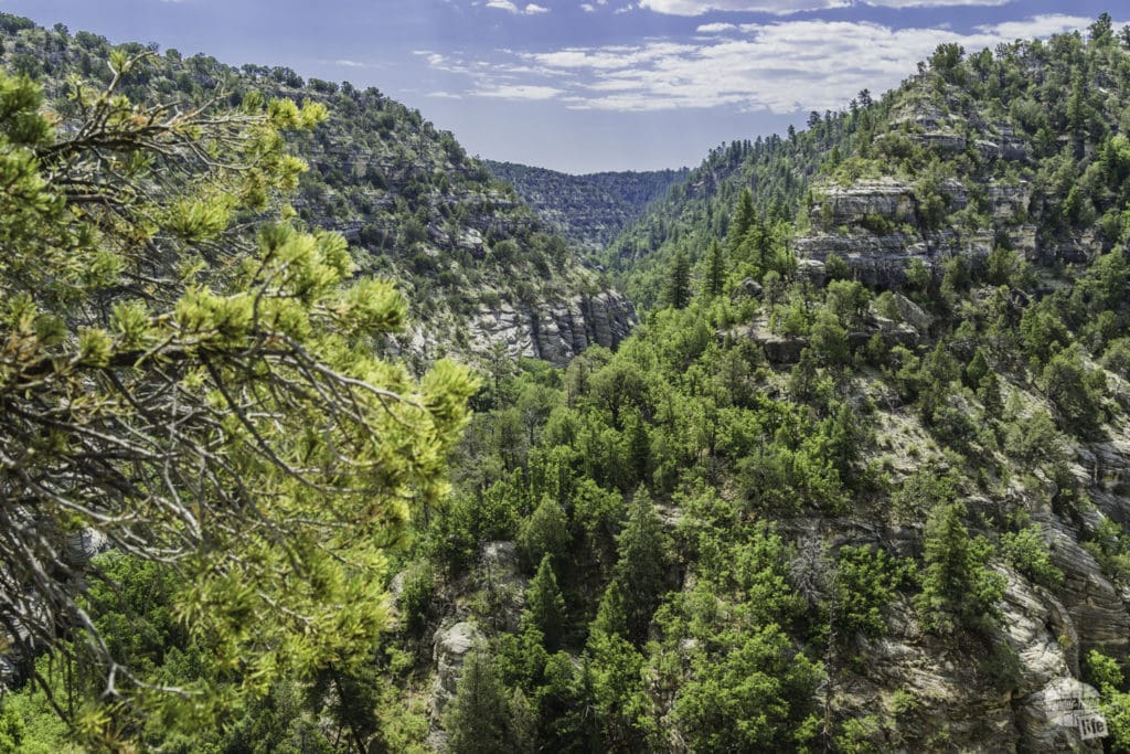 Walnut Canyon National Monument is one of three national monuments in the Flagstaff area.