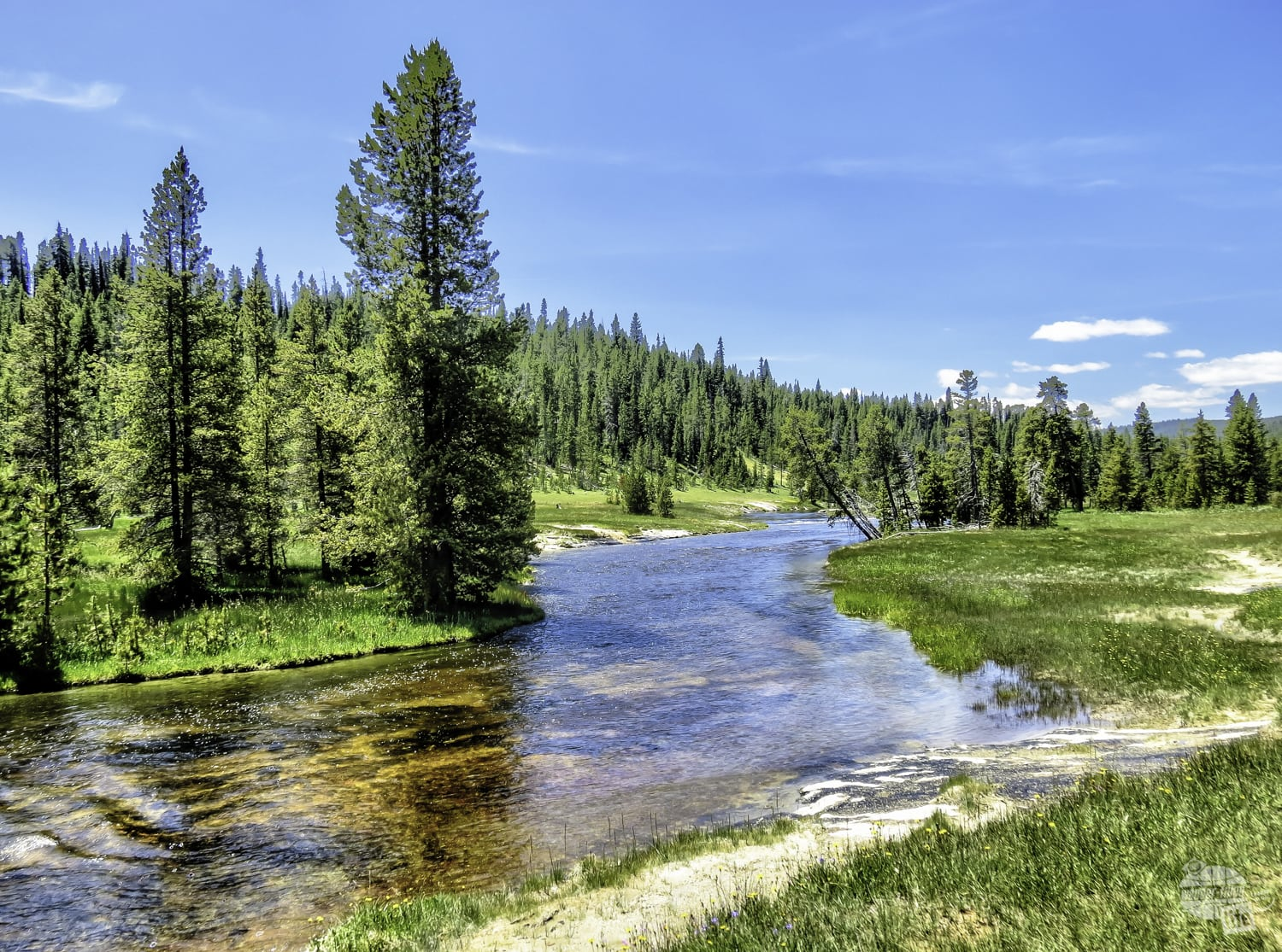 The Firehole River provided a great view on our Yellowstone hike.