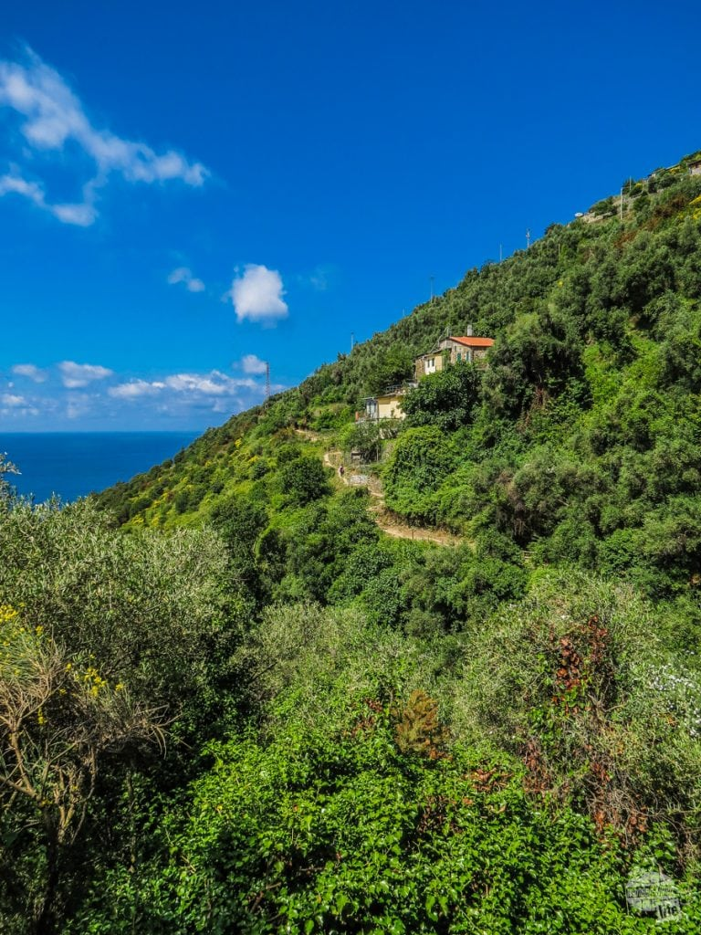 The blue trail connects the five towns of the Cinque Terre.
