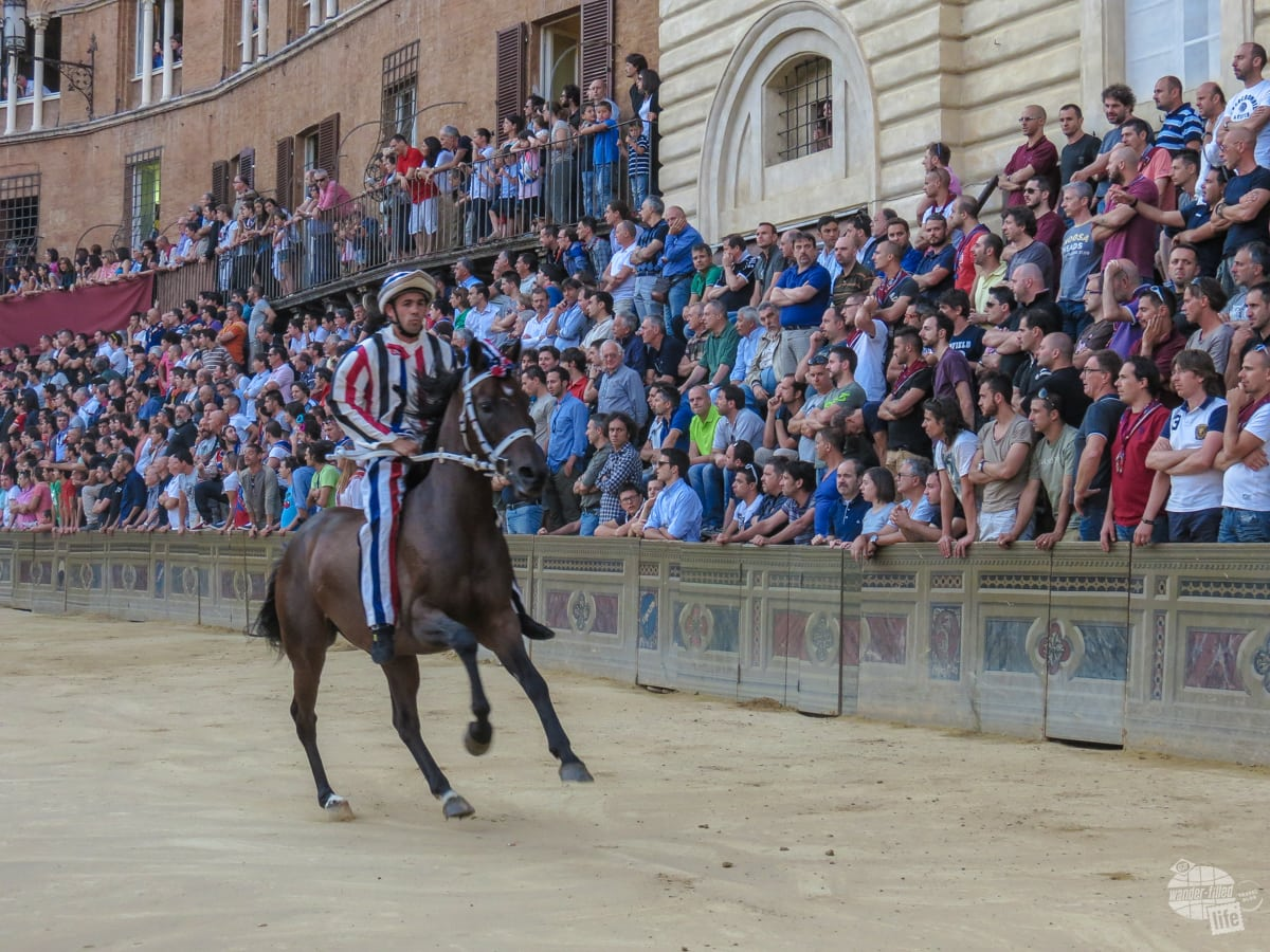Parading in before one of the trials of the Palio.