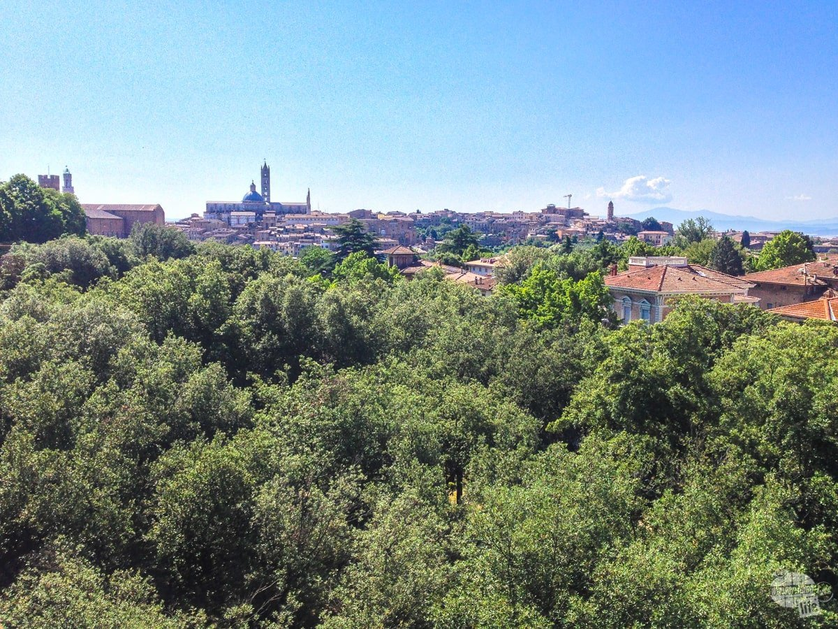 The views of Siena from the walls of the Fortezza Medicea.