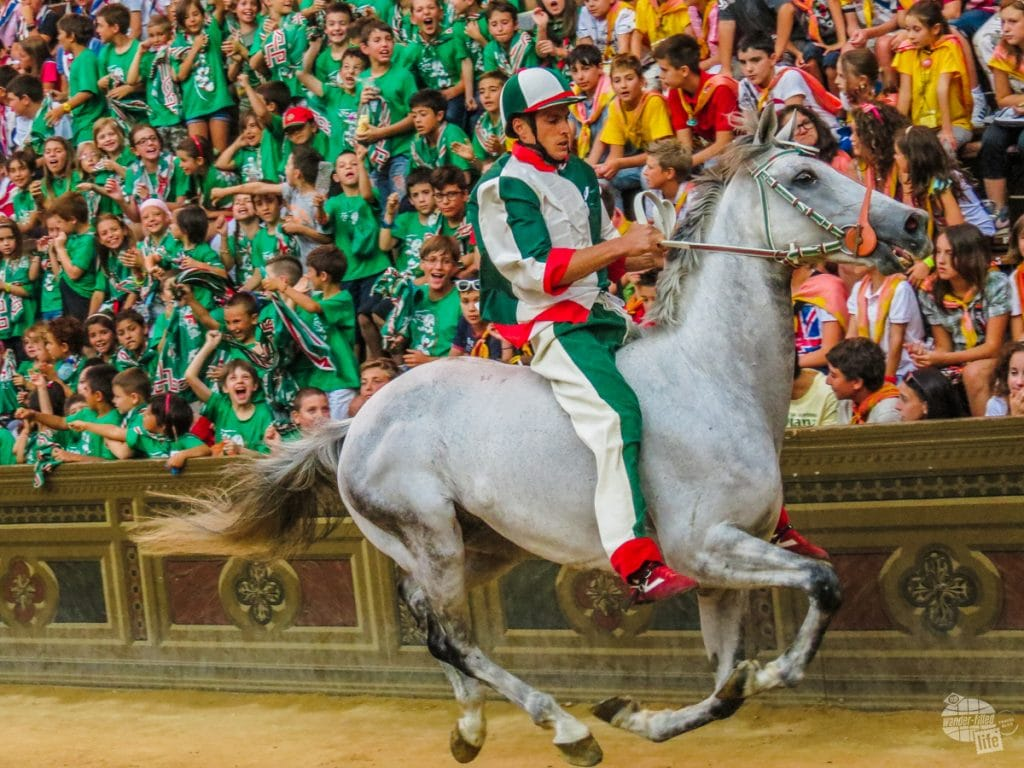 Oca, winner of the July 2013 Palio!