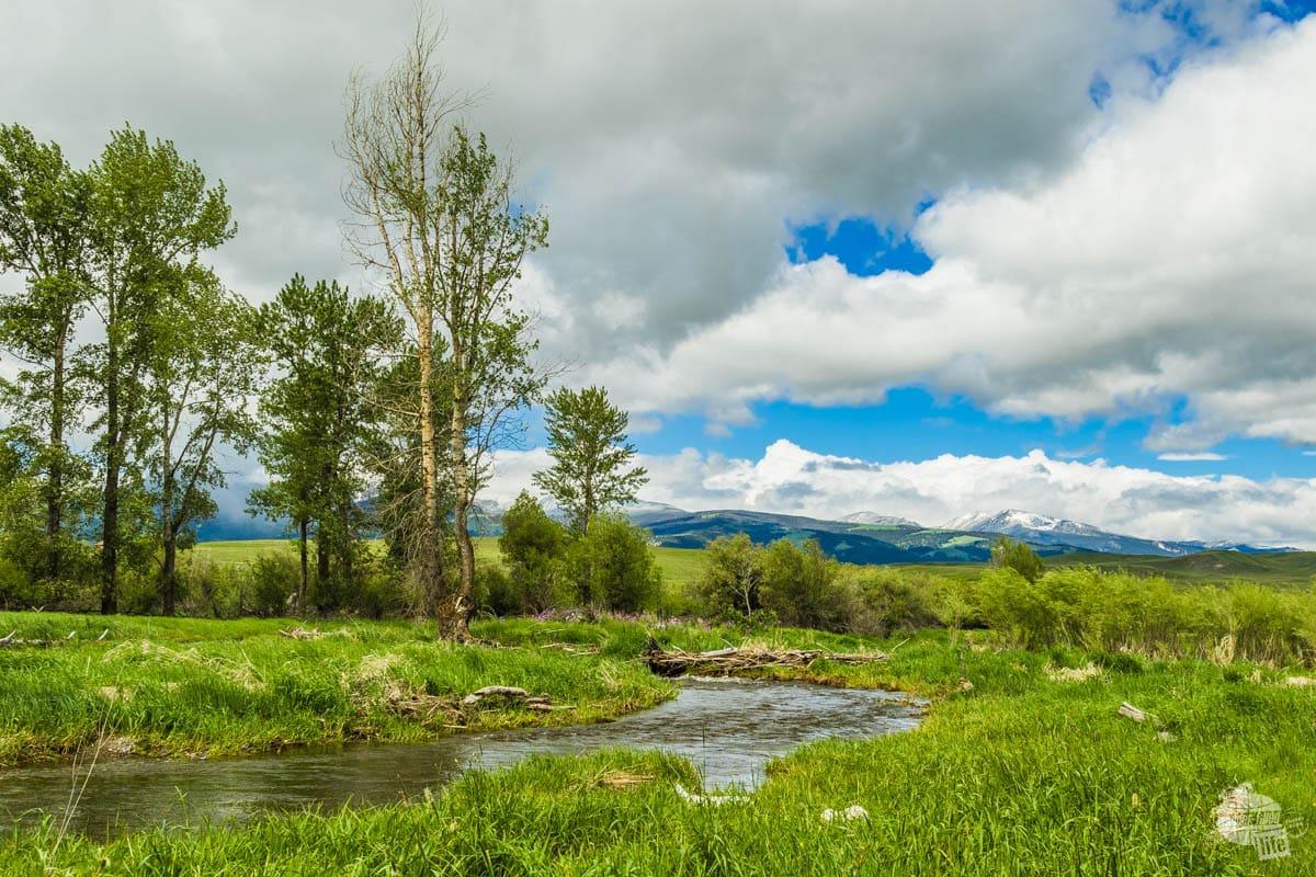 Nature Trail at Grant-Kohrs Ranch NHS