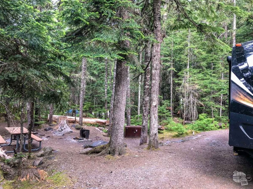 Campsite at Cougar Rock Campground in Mt. Rainier.