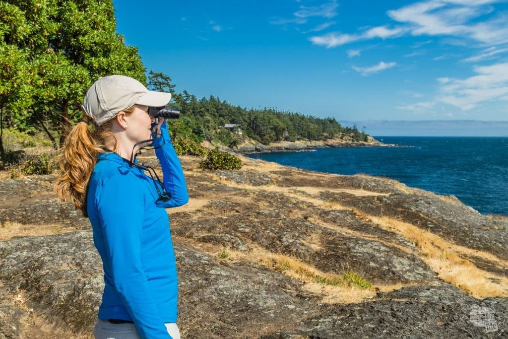 Whale watching on San Juan Island