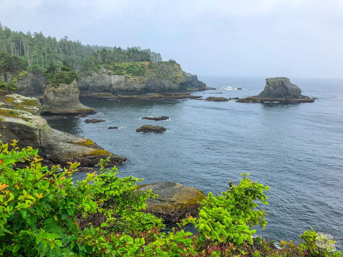 The rugged Pacific coast at Cape Flattery, the northwest corner of the contiguous US.