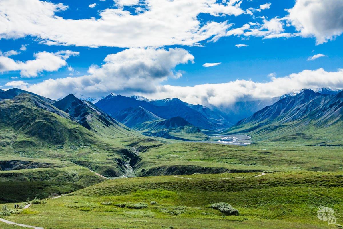 Denali National Park is nothing short of amazing.