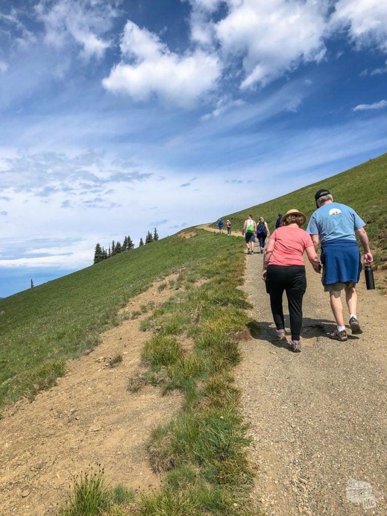Hiking up the Hurricane Hill Trail