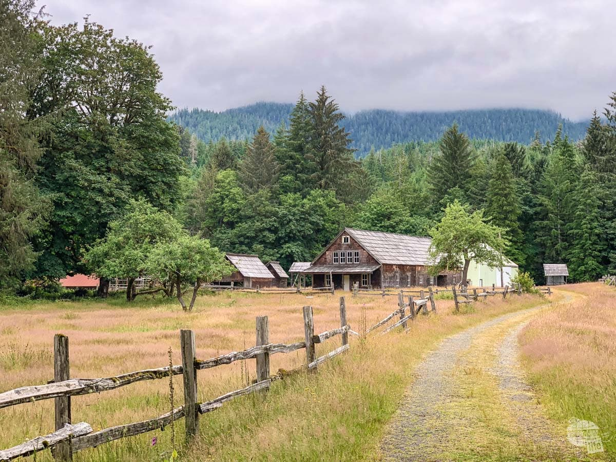 The Kestner Homestead in Quinault Rainforest