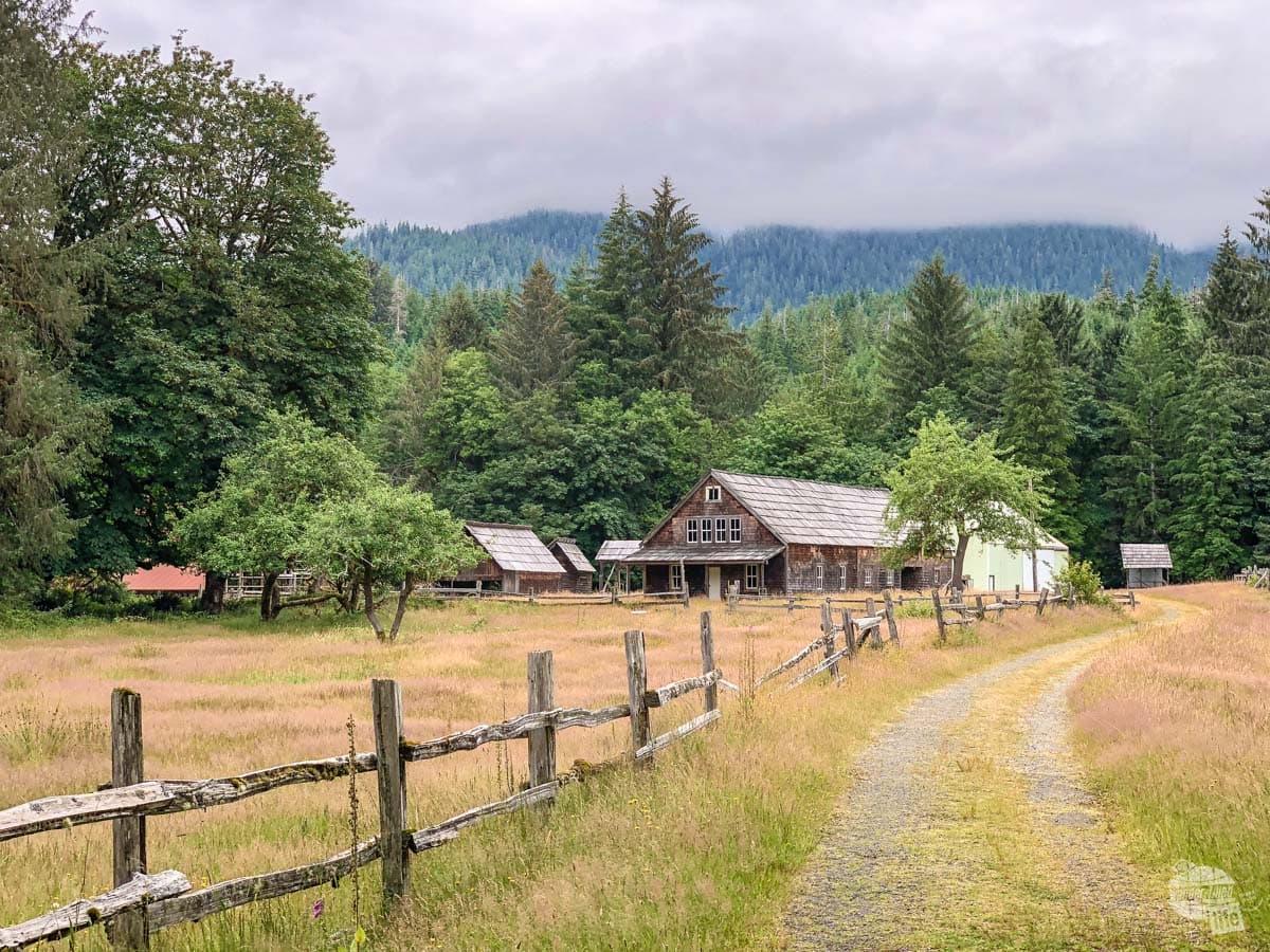The Kestner Homestead in Quinault Rainforest