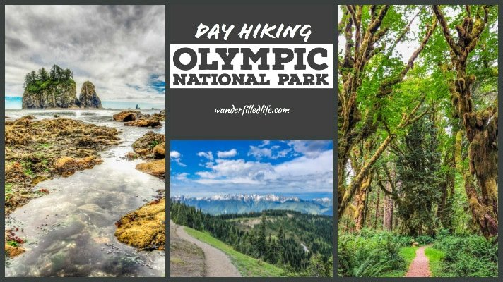 27eca02fdd Day Hiking in Olympic National Park - Our Wander-Filled Life