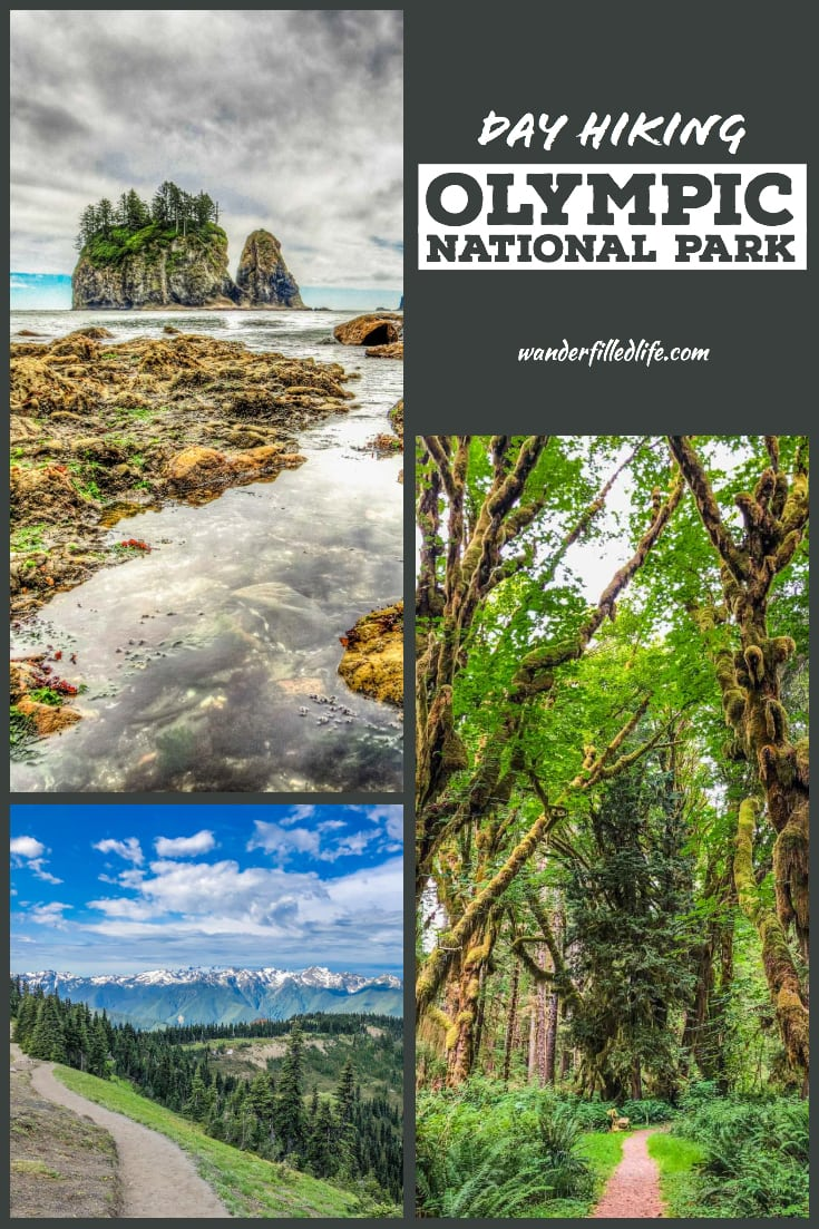 Olympic National Park in northwest Washington is one of the most unique wilderness areas on earth, with rugged coastline, rainforests and alpine splendor.