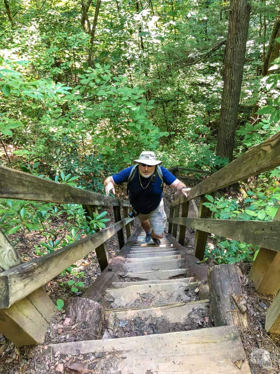 Stairs on Twin Arches loop at Big South Fork NRRA
