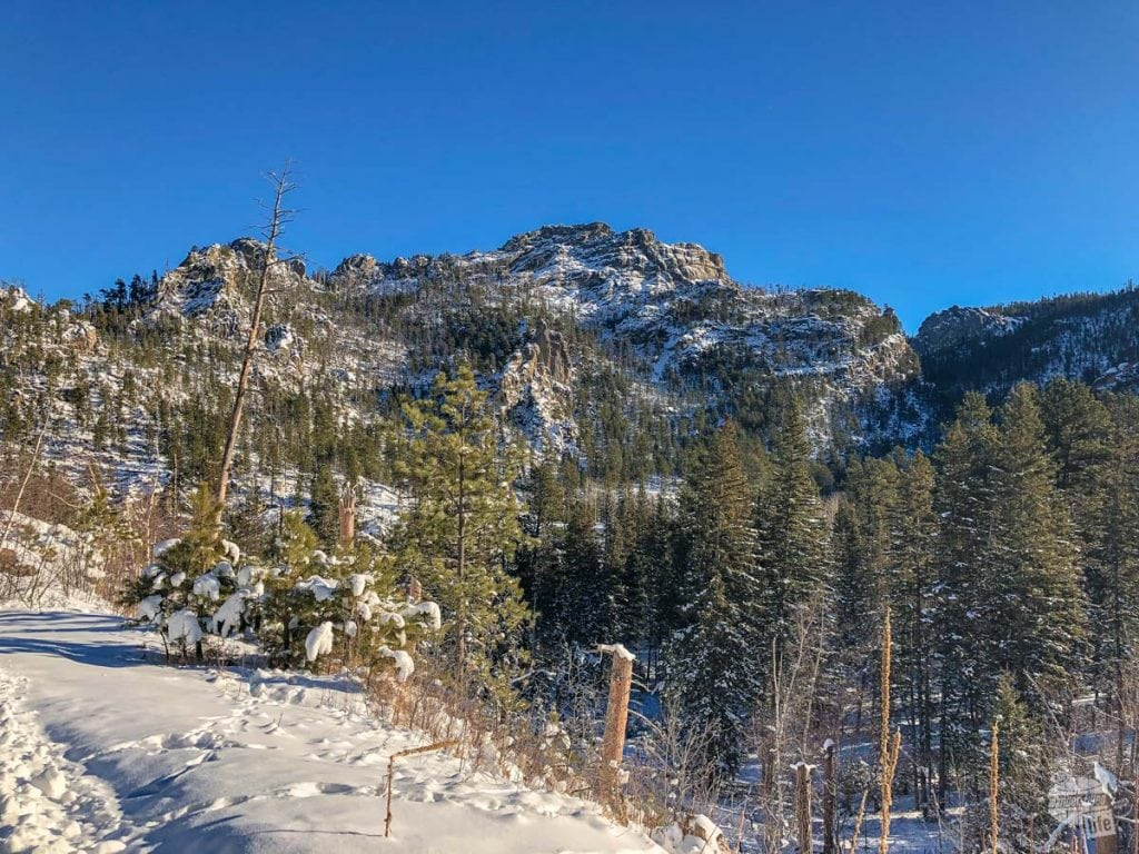 Black Hills in the winter