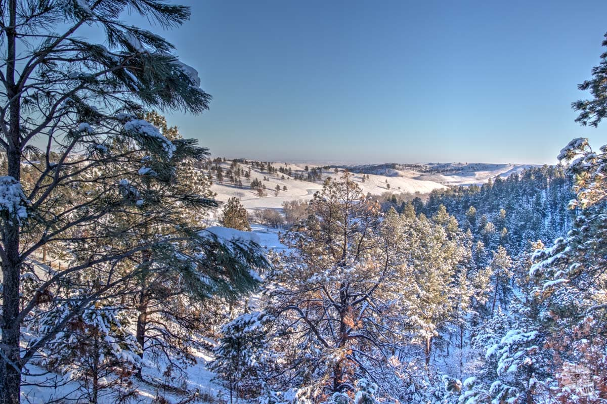 Snow-covered Custer State Park