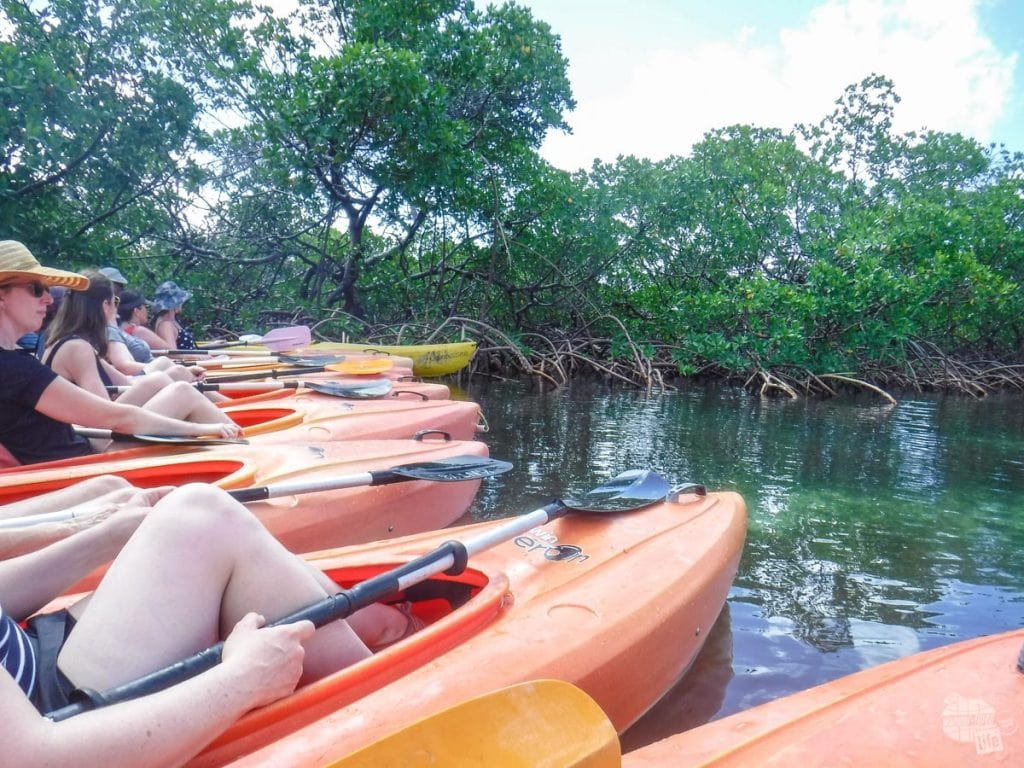 Kayaking in Lucayan National Park