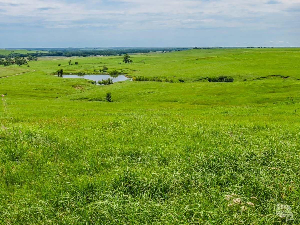 Overlooking Tallgrass Prairie