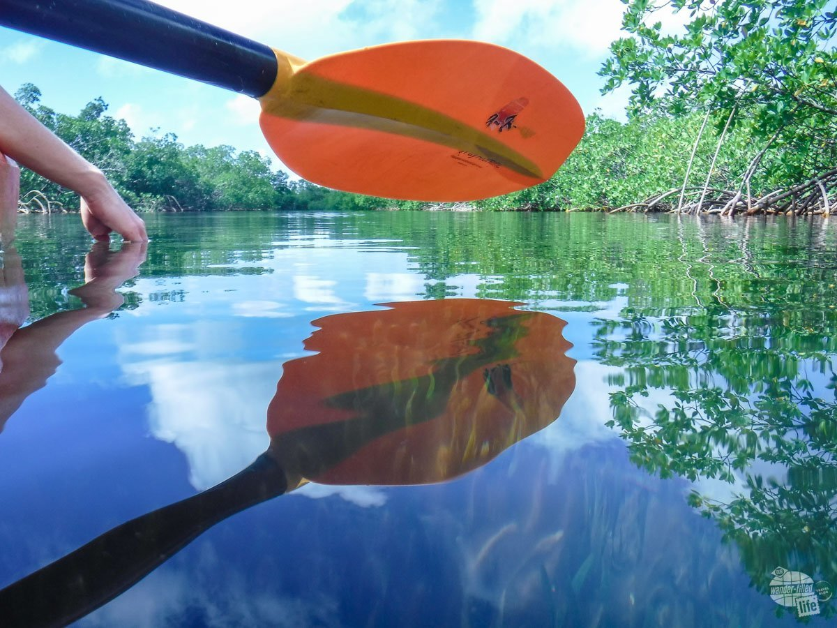 Kayaking in Lucayan National Park.