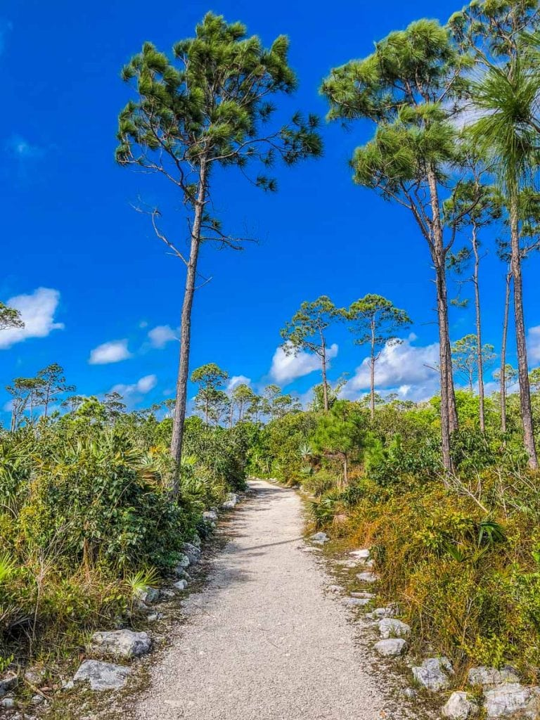 Walking to the caves in Lucayan National Park.