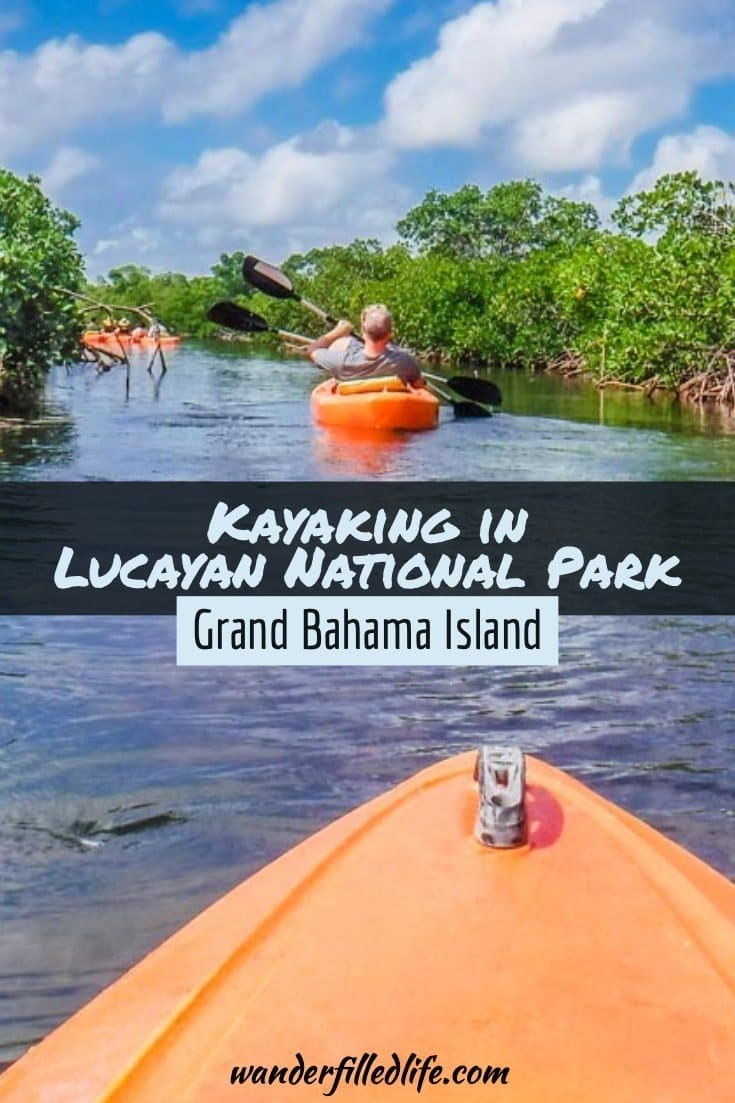 With caves, mangroves and a beautiful beach, kayaking in Lucayan National Park on Grand Bahama Island is a shore excursion worth the money!