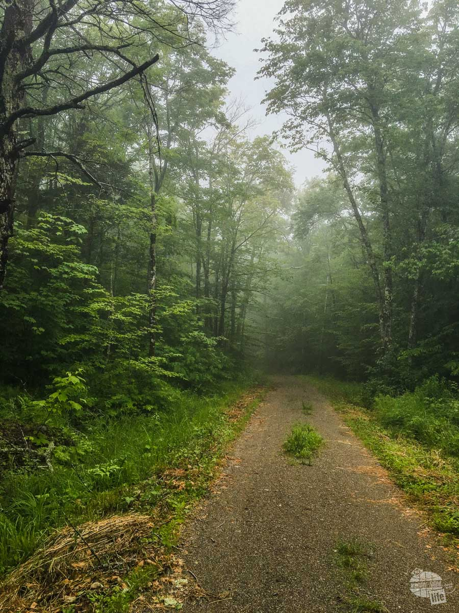 A misty afternoon hike along the trail in Camden Hills State Park.