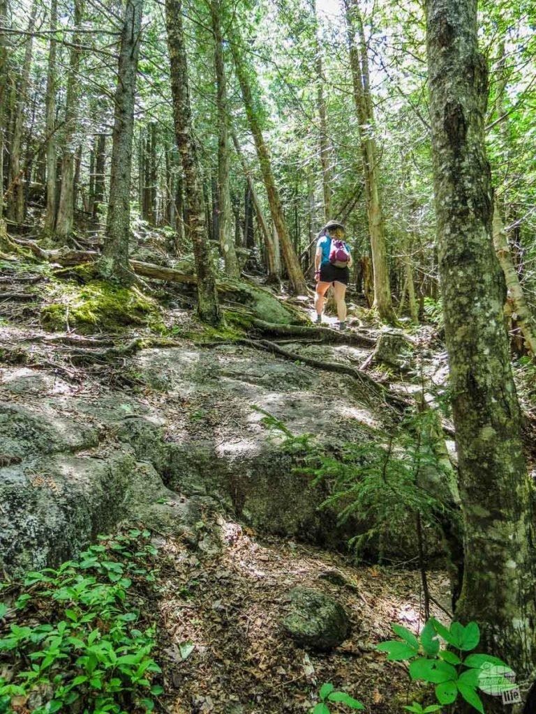 Bonnie climbing up the steep Round Mountain Trail in the Adirondacks.