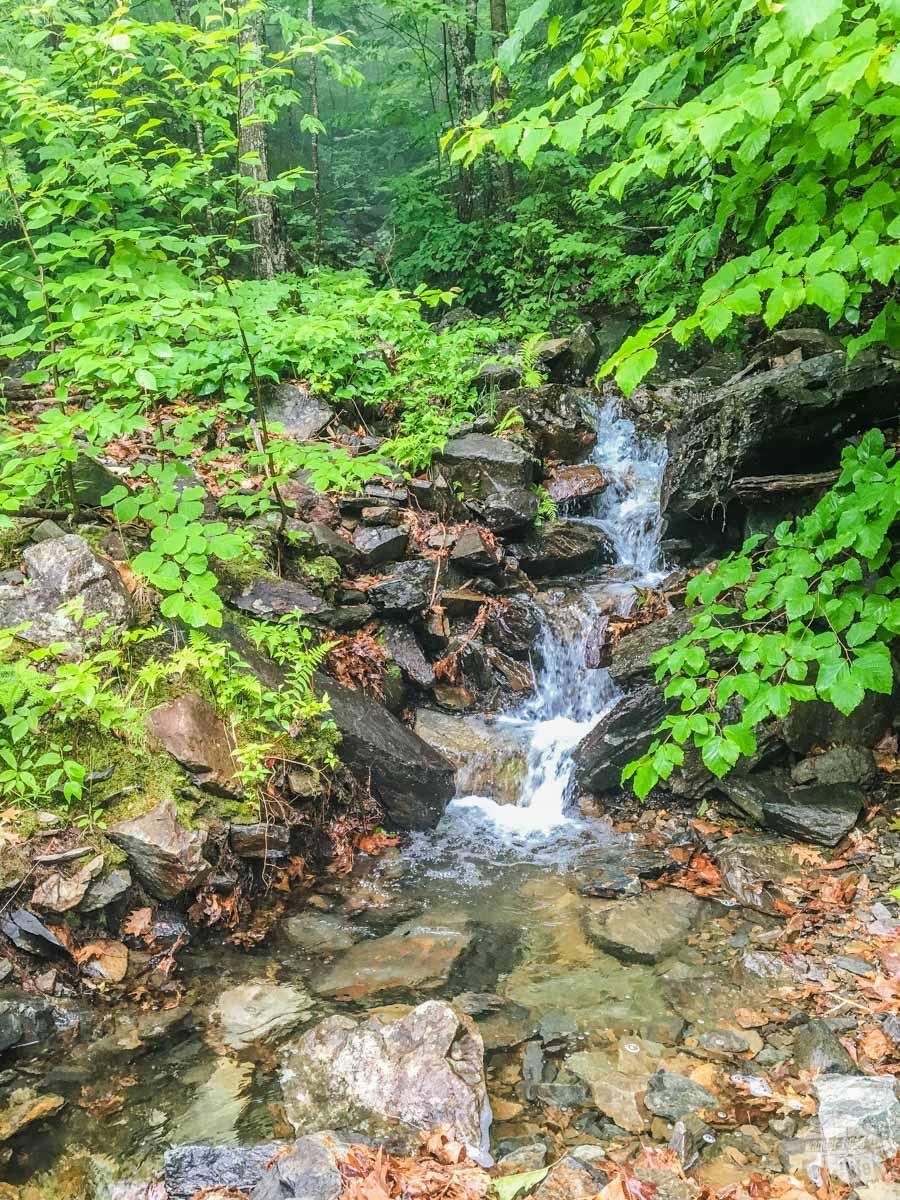 A small cascade along the trail
