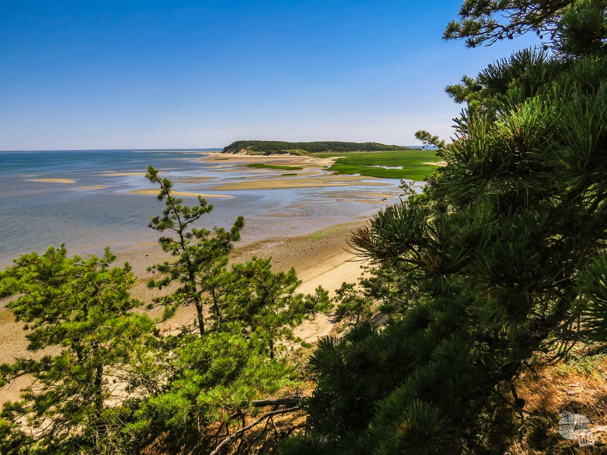 The hike out to Great Island had some excellent views of Cape Cod!