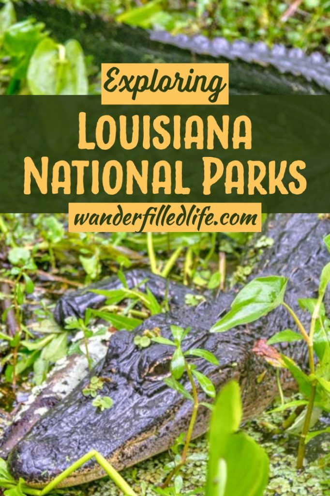 Louisiana's National Parks offer a variety of experiences... everything from Cajun and Creole cultures to pre-Columbian earthen mounds and gorgeous swamps. #Louisiana #NationalParks #FindYourPark