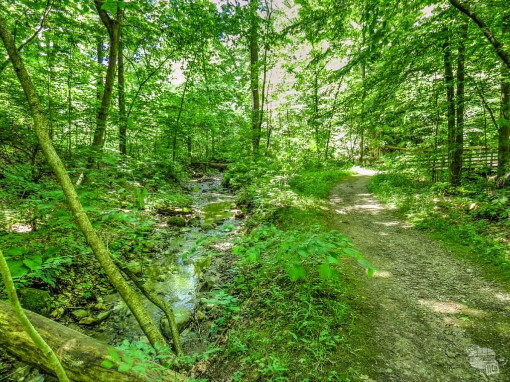 Boston Run Trail is a great place to escape the crowds in Cuyahoga Valley National Park.