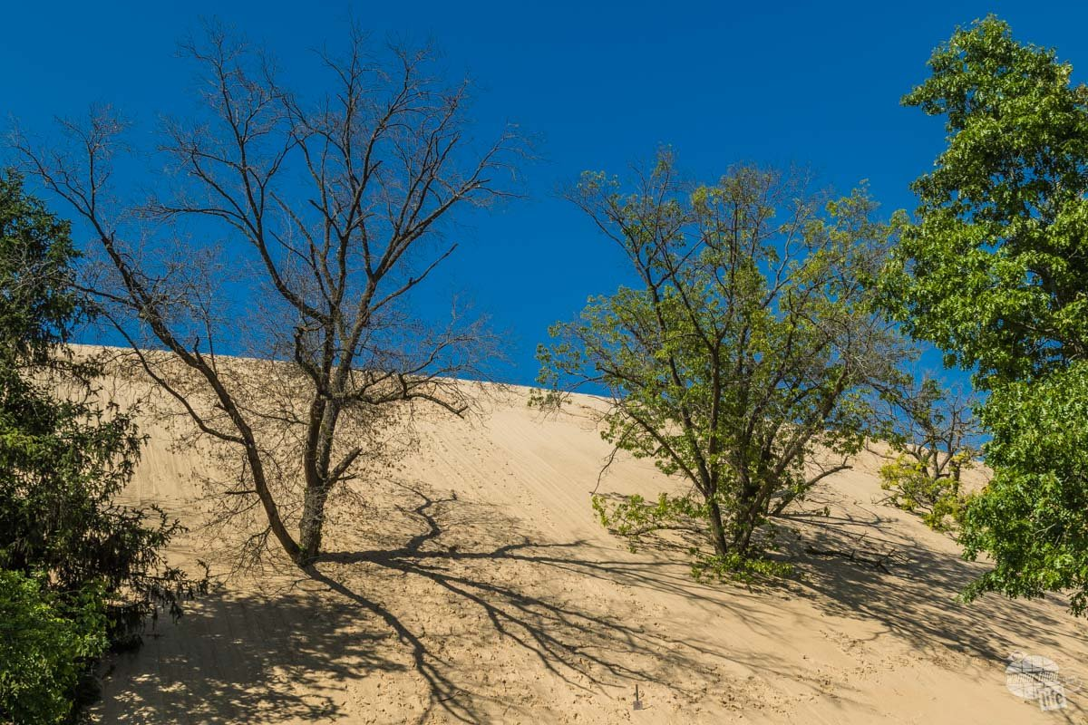 Indiana Dunes National Park is one of three Indiana National Parks