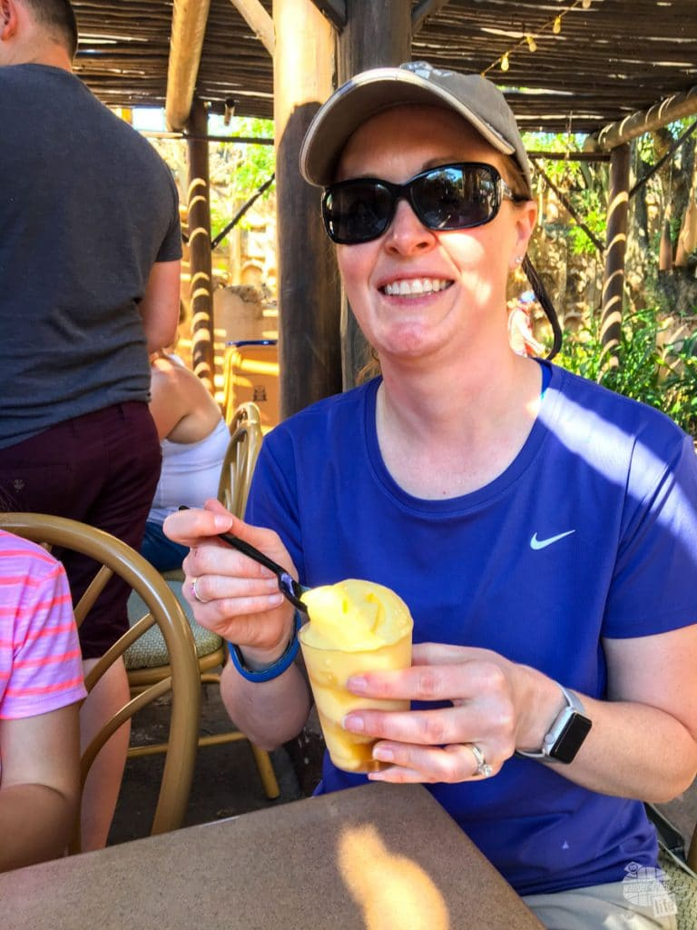 If there is one treat you simply must not miss at Disney World, a Dole Whip is it. A whipped pineapple concoction, served with or without rum, is THE treat on a hot day.