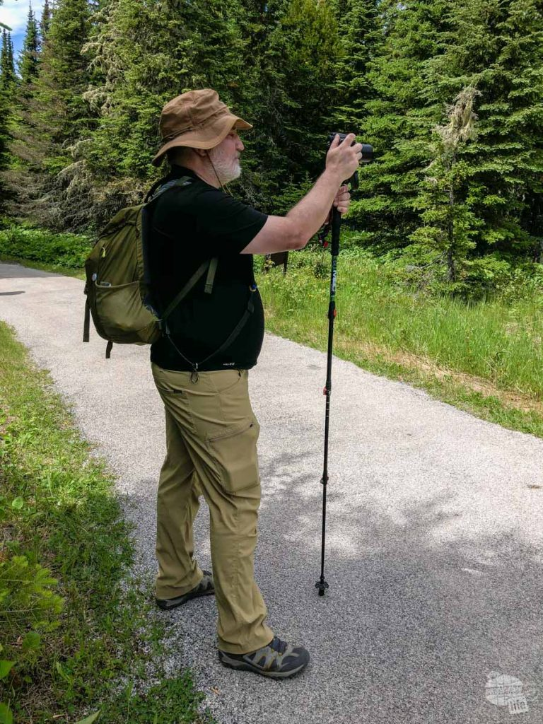 Grant using the hiking staff as a lightweight monopod to steady the SX40HS for shots of a moose.