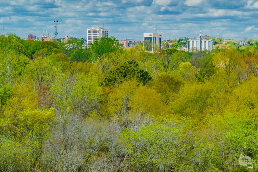 The Macon skyline from the Temple Mound at Ocmulgee National Monument.