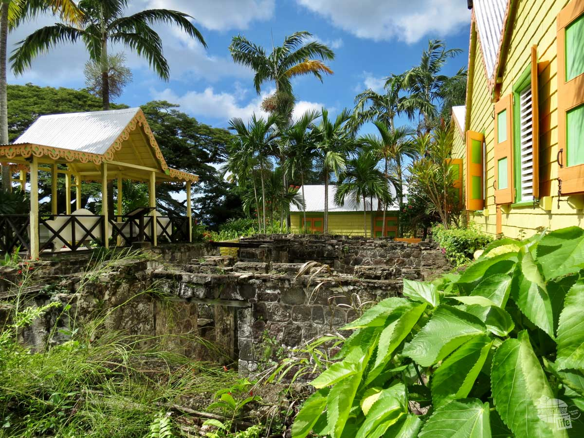 Romney Manor was a plantation on Saint Kitts. It has the distinction of being owned by the great great great grandfather of Thomas Jefferson and the first plantation on the island to free its slaves.