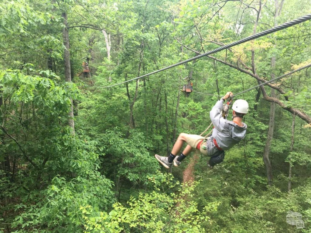 The first few zip lines ran through the forest canopy.