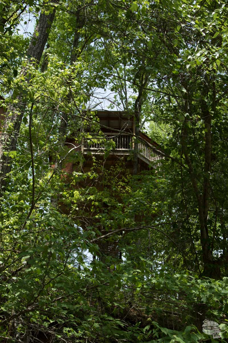 Our treehouse cabin