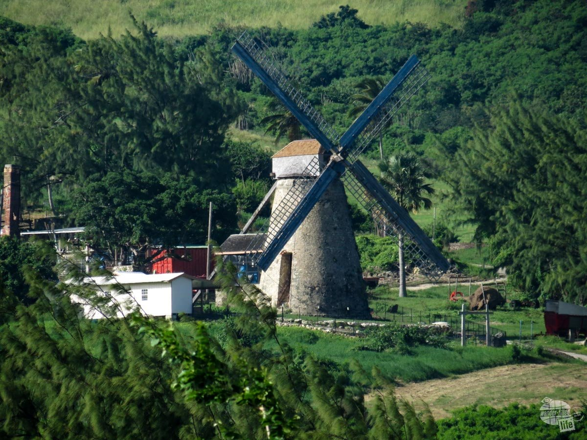 One of the last remaining operational windmills from Barbados' sugar farming days.