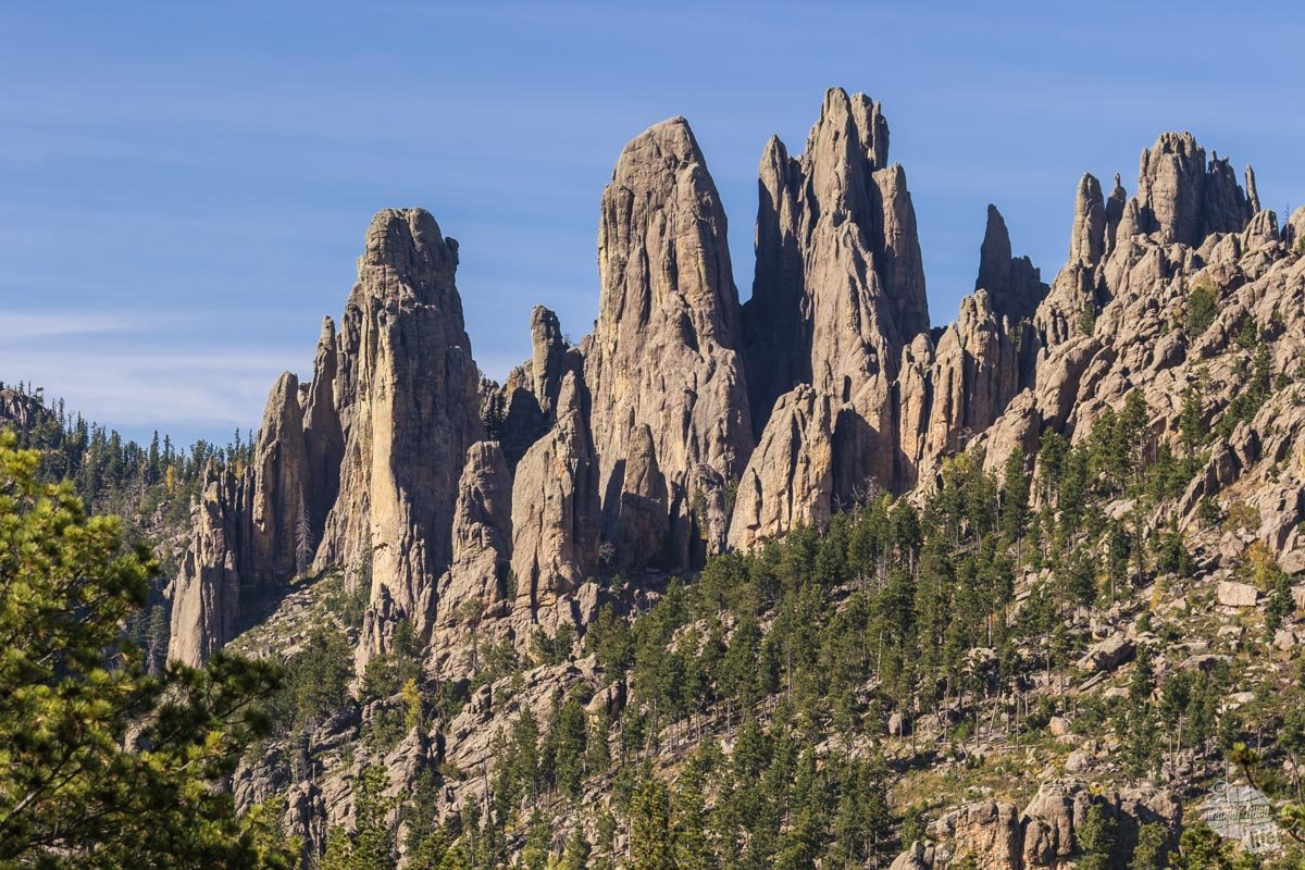 The Cathedral Spires in Custer State Park.