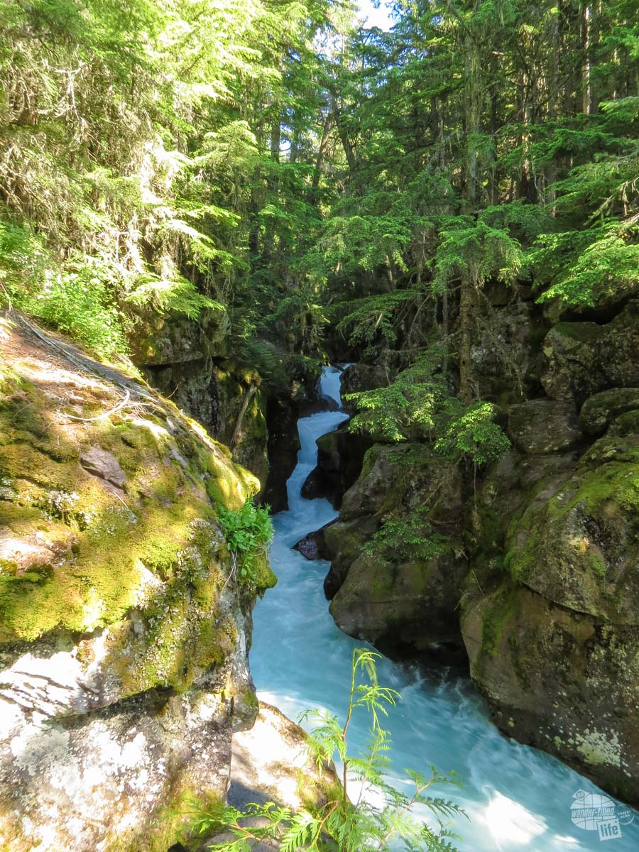 Avalanche Creek in Glacier National Park