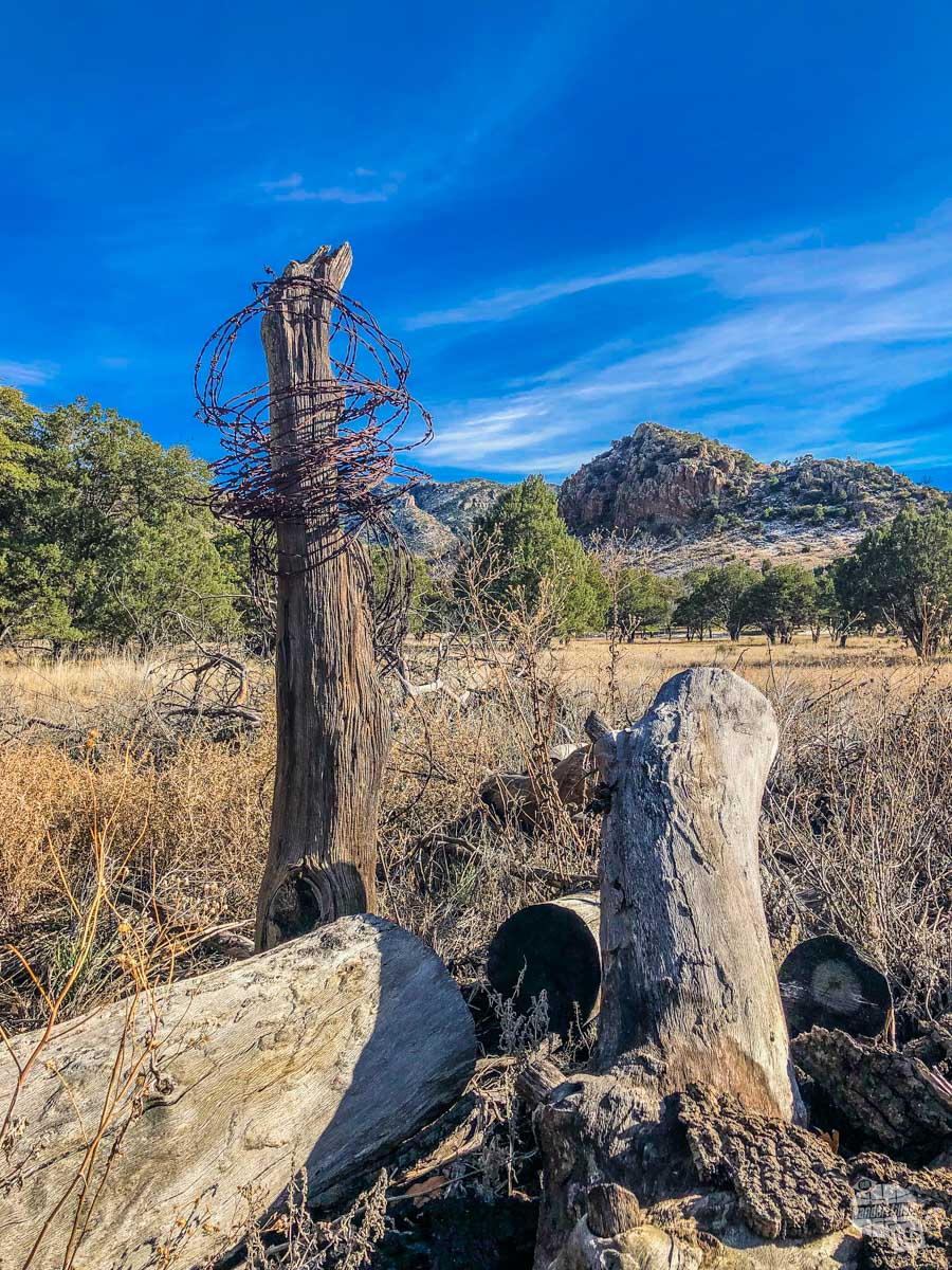 A bit of old barbed wire left from the Faraway Ranch.